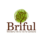 briful logo icon